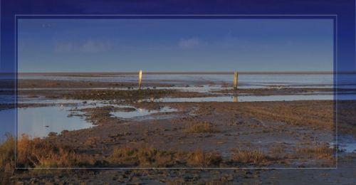marshside
