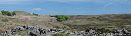 Great Hill, West Pennine Moors