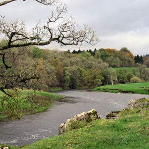 the wharfe